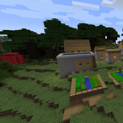 Updated Village Seed