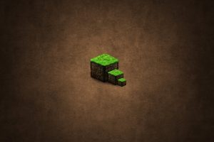 The Dirt Block Minecraft Wallpaper