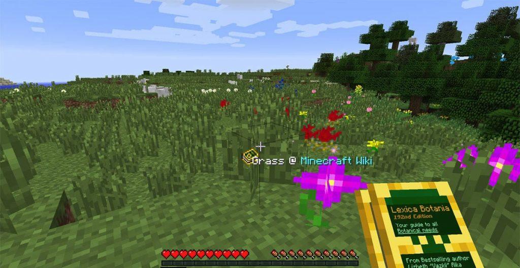 Botania Mod Screenshot 3