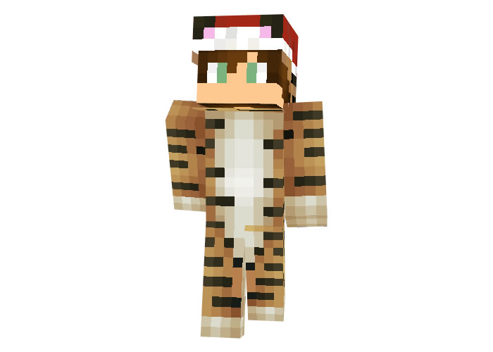 Dreambig02 Christmas Skin for Minecraft