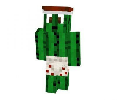 xd1003 (Cactus) Skin | Minecraft Mob Skins