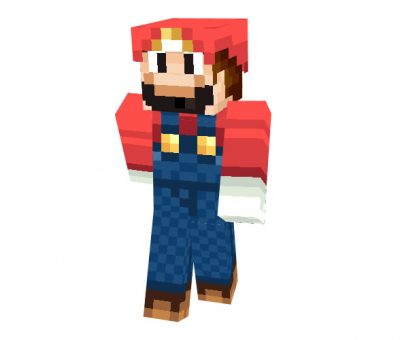 Mario Bros Skin