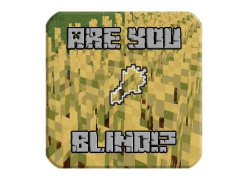 Are You Blind!?