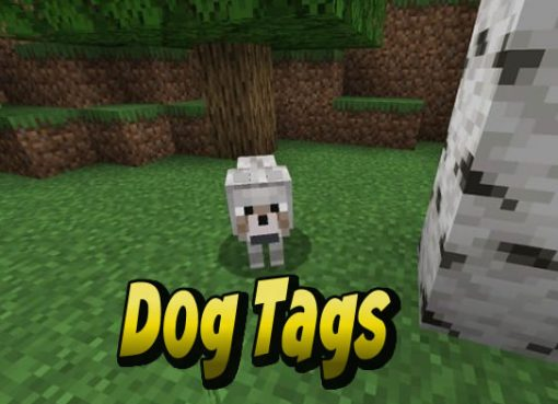 DogTags Mod for Minecraft