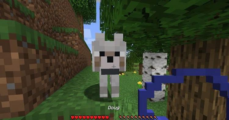 DogTags Mod Screenshot 2