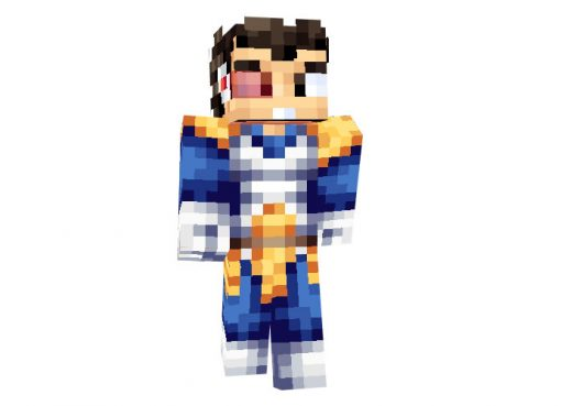 Prince Vegeta (Dragon Ball) Skin