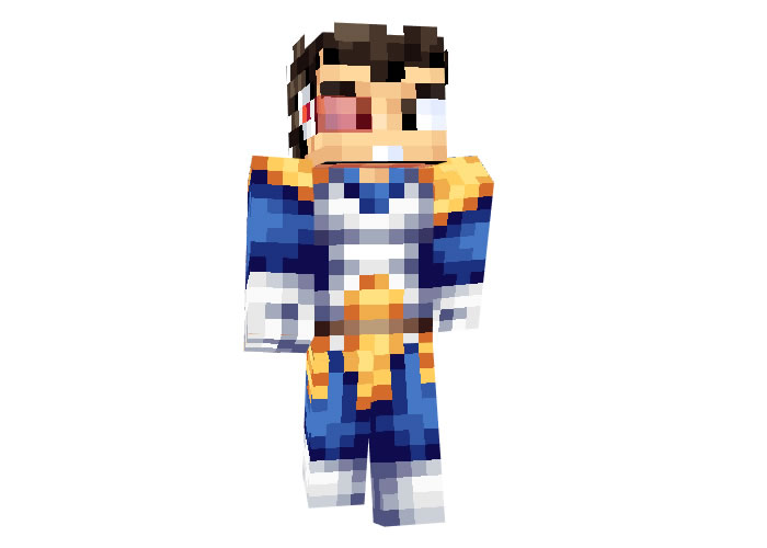 Prince Vegeta (Dragon Ball) Skin