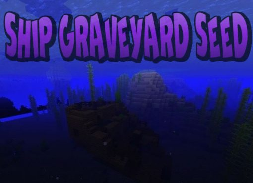Ship Graveyard Seed for Minecraft 1.15.2