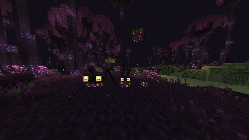The Endergetic Expansion Mod Screenshot 2