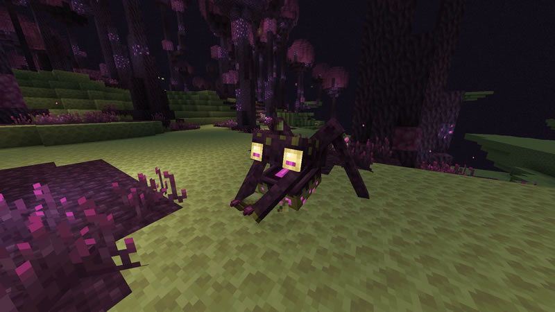 The Endergetic Expansion Mod Screenshot