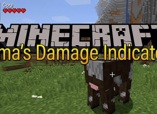 Amas Damage Indicator Mod