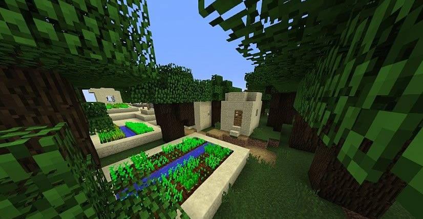 Interesting Villages Seed Screenshot