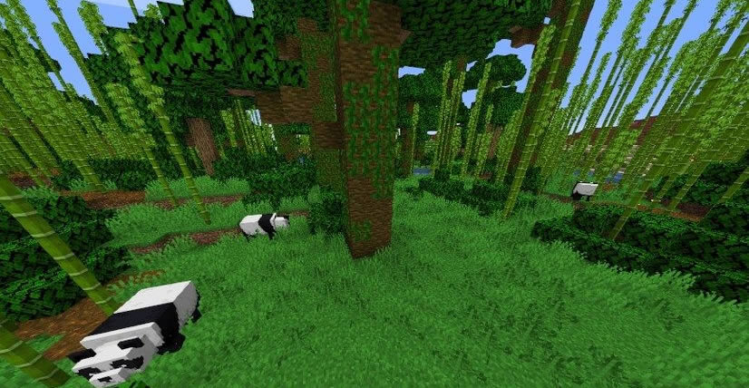 Jungle and Mesa Seed 1.15.2 Screenshot