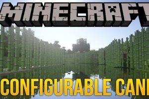 Configurable Cane Mod