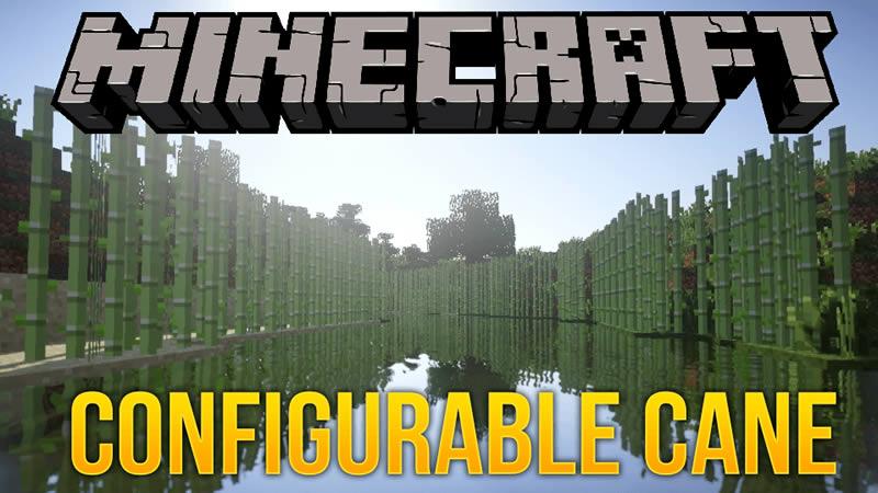 Configurable Cane Mod for Minecraft