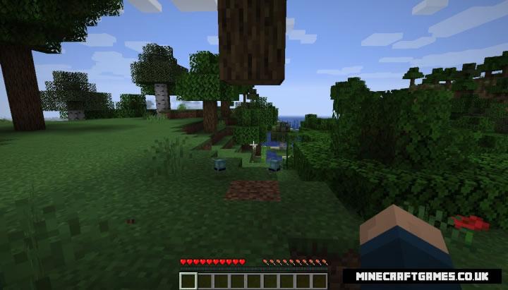 JRandomizer Mod Screenshot 2