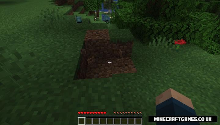 JRandomizer Mod Screenshot 3