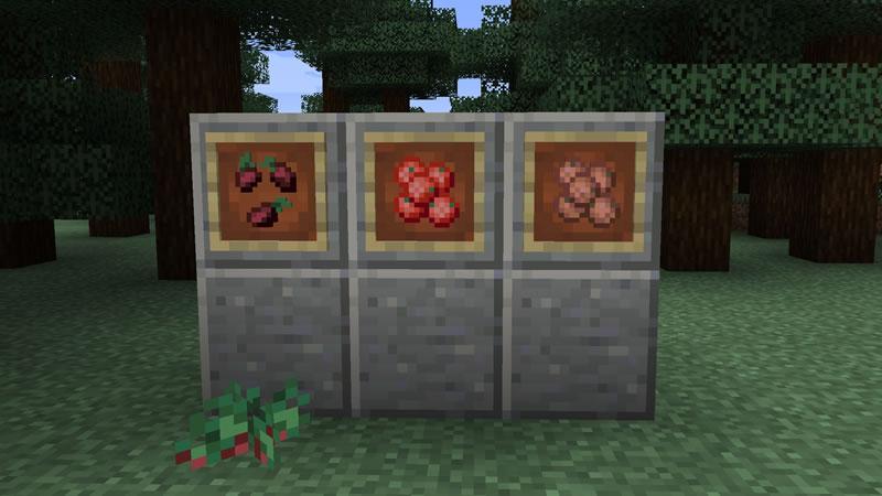 Berry Good Mod Screenshot