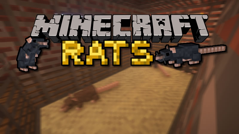 Rats Mod for Minecraft