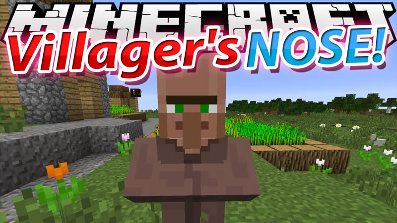 Villager's Nose Mod