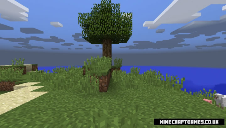 Walk Through Blocks Mod Screenshot 3