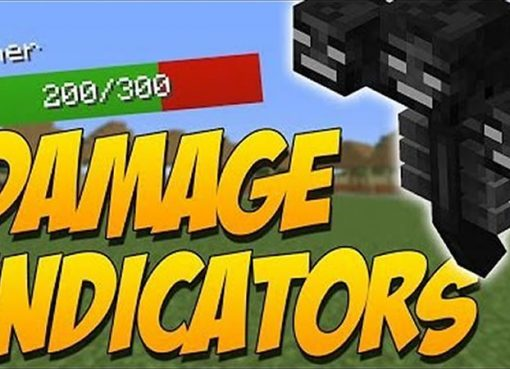 Damage Indicators Mod by ToroCraft for Minecraft