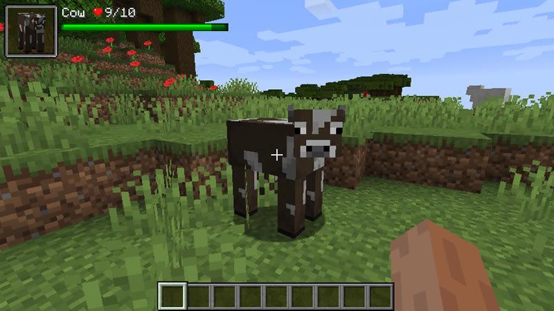 Damage Indicators Mod by ToroCraft Screenshot