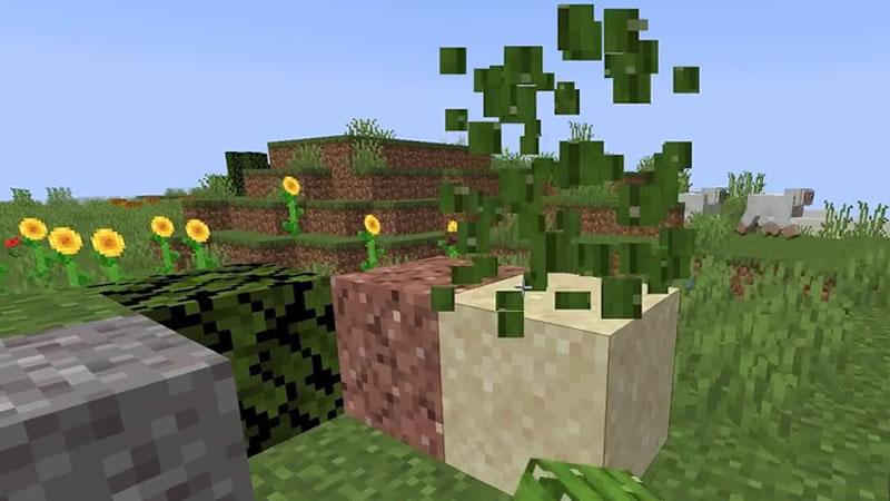 Shuffle Mod Screenshot
