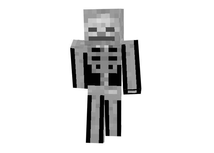 Alebibo29 (Skeleton) Skin for Minecraft