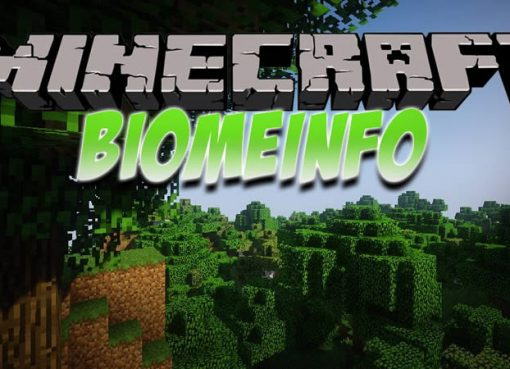 BiomeInfo Mod for Minecraft