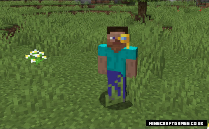 Villager Hats Mod Screenshot 2