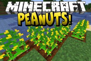 Peanuts Mod for Minecraft