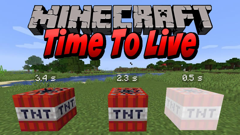 Time To Live Mod for Minecraft