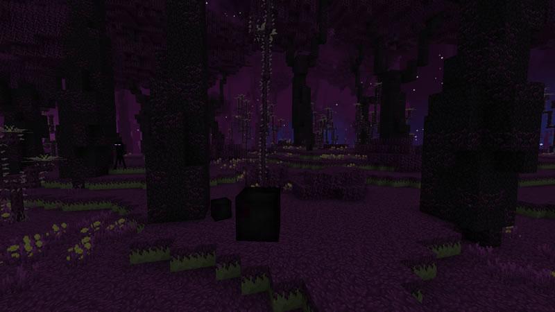 BetterEnd Mod Screenshot 5