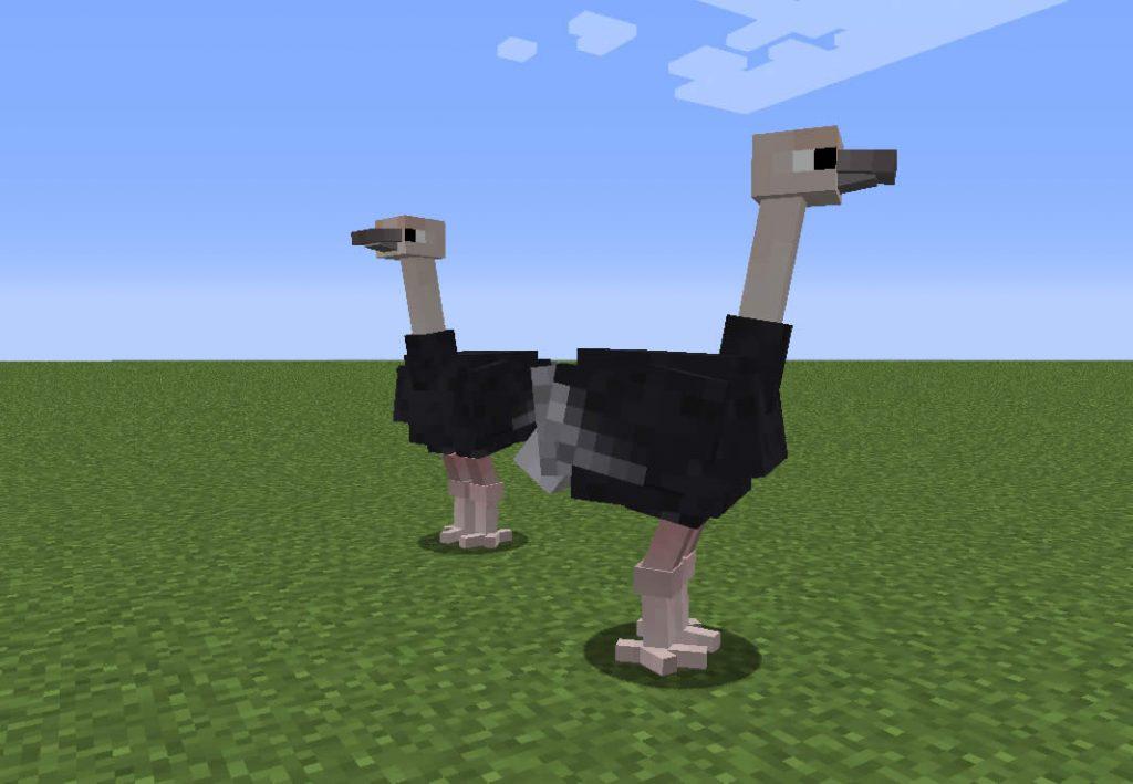 Exotic Birds Mod Screenshot