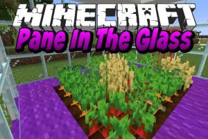 Pane In The Glass Mod for Minecraft
