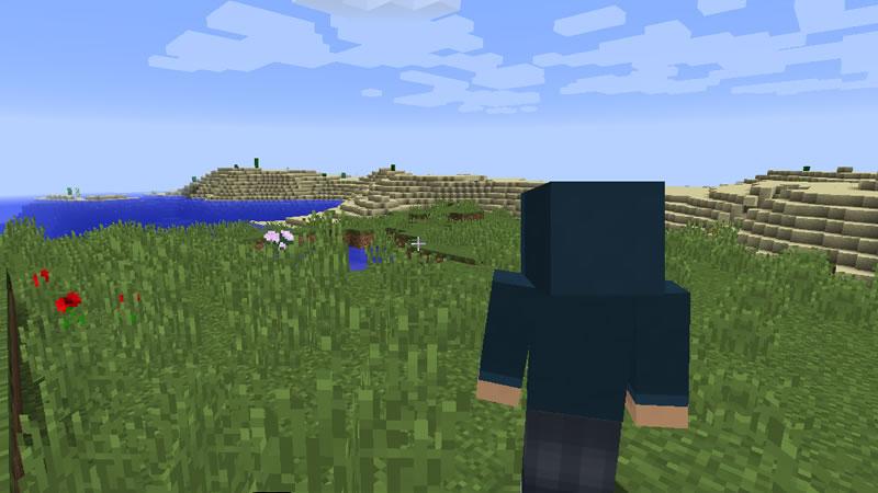 Shoulder Surfing Reloaded Mod Screenshot 2