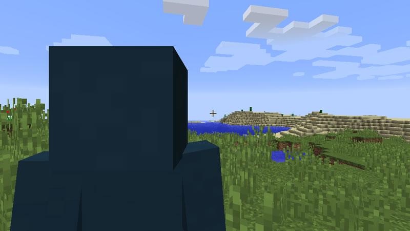 Shoulder Surfing Reloaded Mod Screenshot