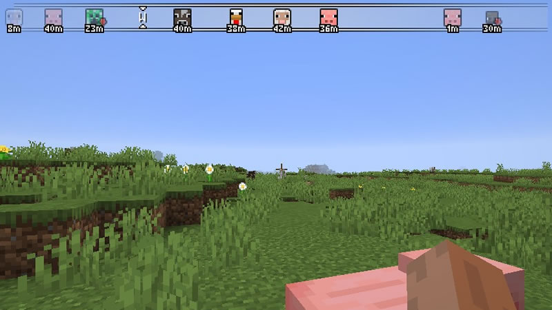 Advanced Compass Mod Screenshot 2