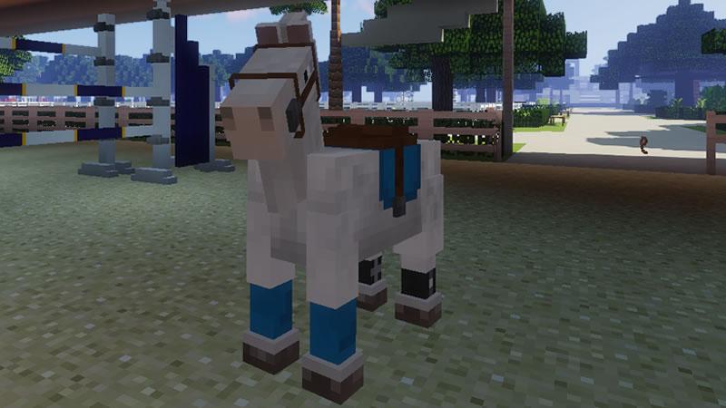 Horse Tack Mod Screenshot