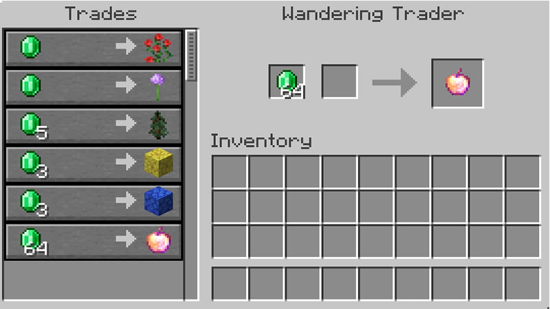 Wandering Trader Improvements Mod Screenshot