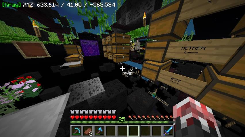ATE48s Xray Mod Screenshot