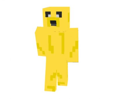 Jake the dog Skin for Minecraft