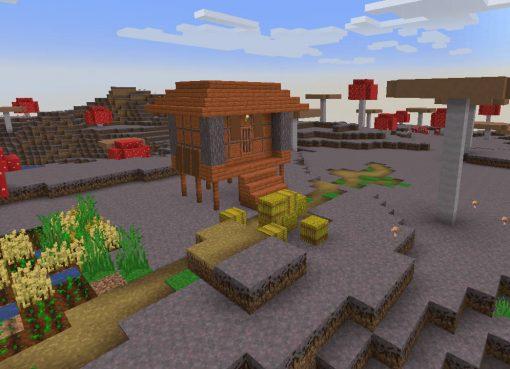 Mushroom Biome Village Seed for Minecraft 1.17.1